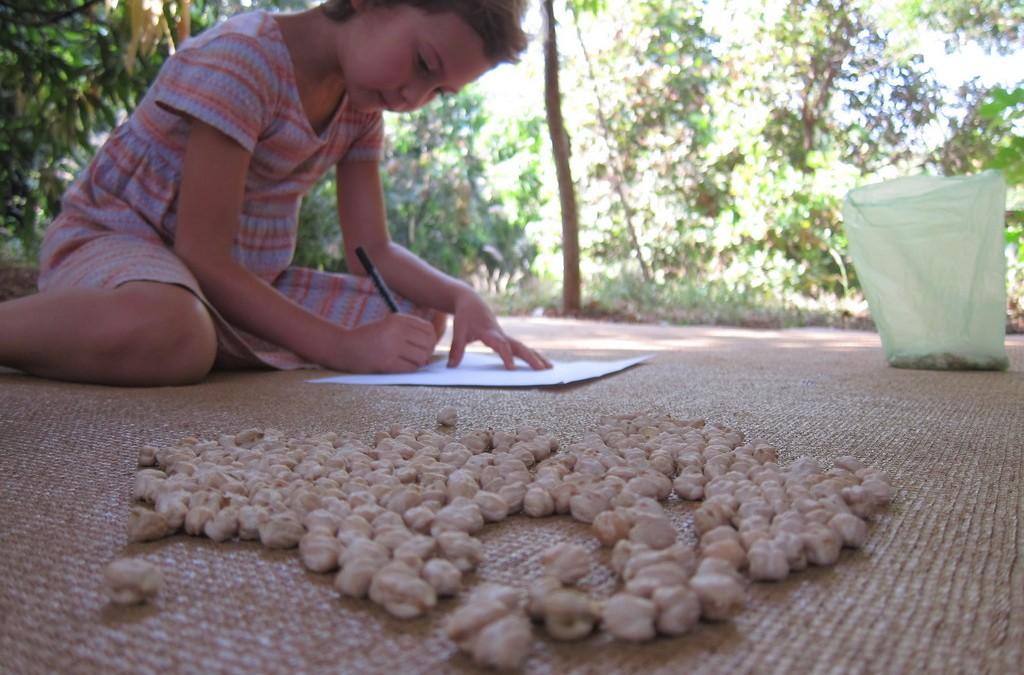 Время майя в Перелетной школе