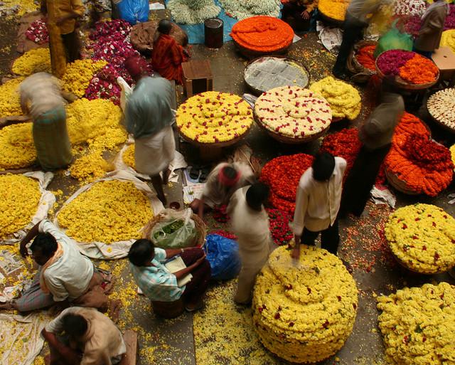 В Бангалоре с детьми